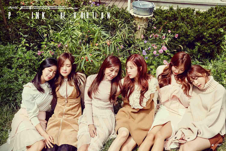 Apink睽違1年2個月終於在今年9月發行第三張正規專輯《Pink Revolution》,雖然成績不如預期但能夠看到Apink在韓國活動作為粉紅熊貓的一員,小編完全開心阿~~