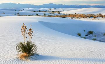 連童話書都沒有的浪漫白色沙漠