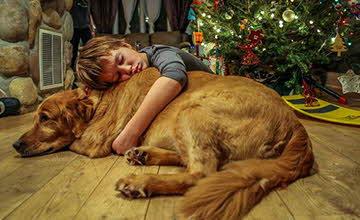誰說只有小狗可愛? 大狗狗的魅力不同凡響
