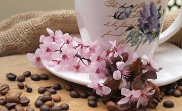 秋季天氣變化大 7道茶飲,讓你跟感冒說掰掰!