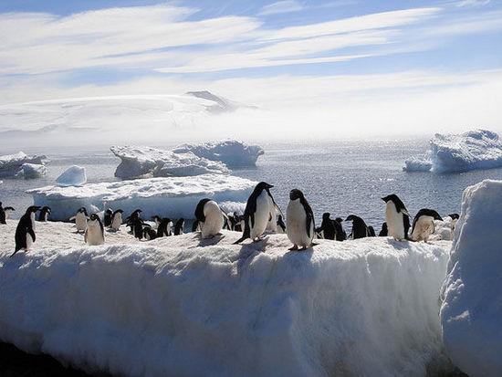 10.南北極 倒計時~48年
