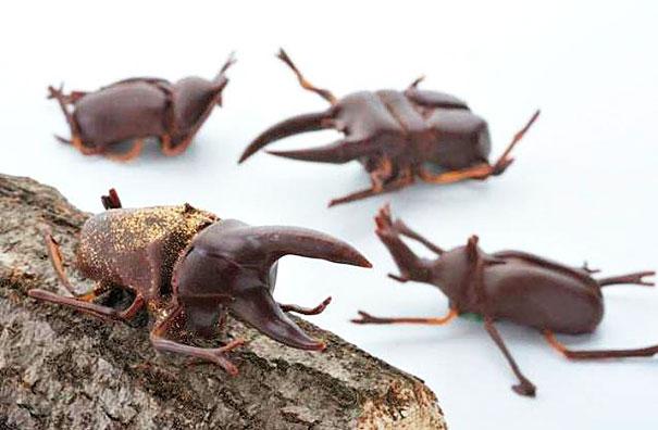 12.甲蟲巧克力 並不是所有咖啡色都適合做巧克力好嗎... 不然乾脆做蟑螂好了...