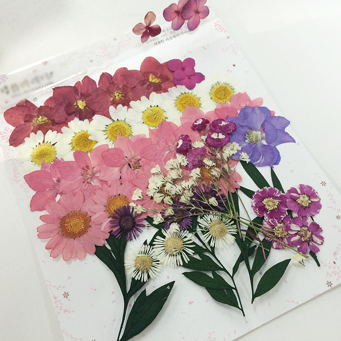 在韓國買約是6000元~15000元韓幣 (台幣約170~435元) 花的種類跟大小依據個人喜好做選擇囉~