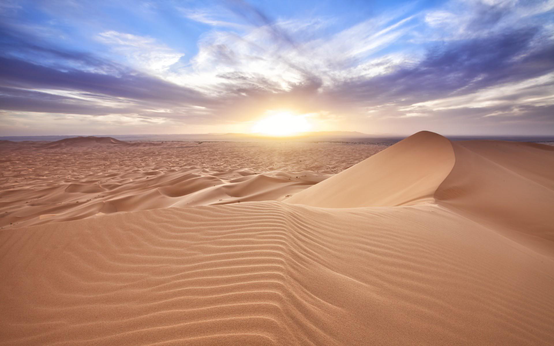 黃沙紛飛、一望無盡 這就是我們對沙漠的印象 但是世界上並不是只有這一種沙漠景象唷~