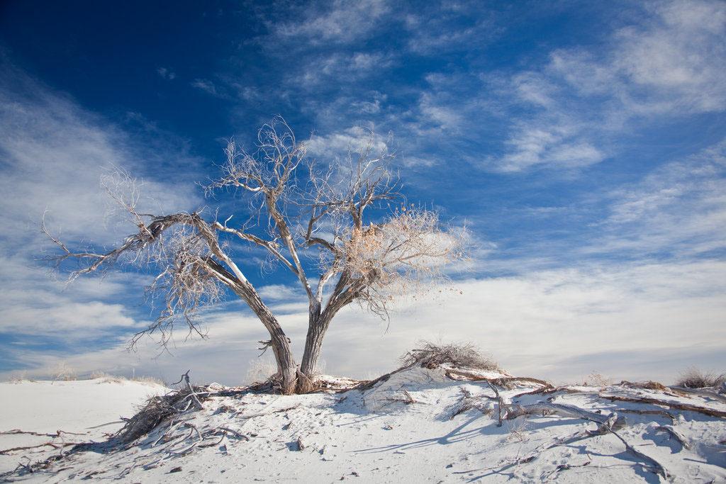 好像天寒地凍般的風景