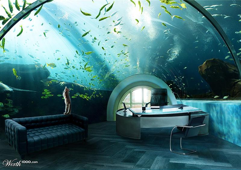 #19 是誰住在深海的大鳳梨裡?