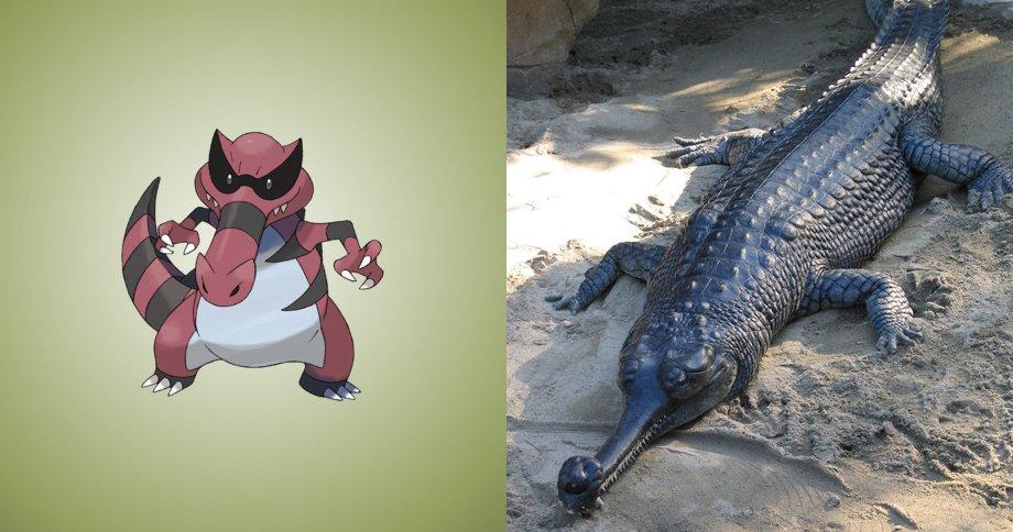 5. 小鋸鱷 原型:鱷魚