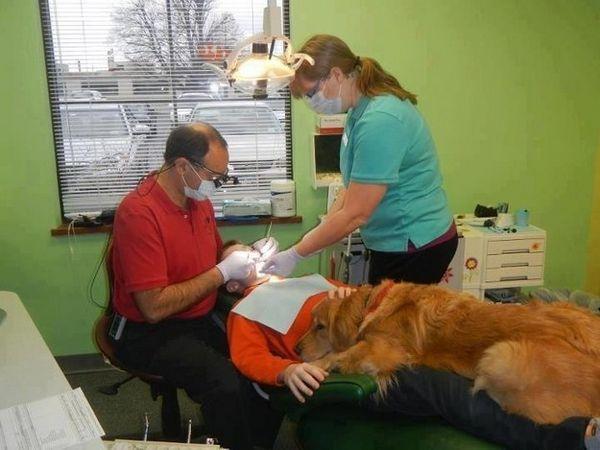 去看可怕的牙醫時,他也會在一旁陪伴著你,讓你不感到害怕!