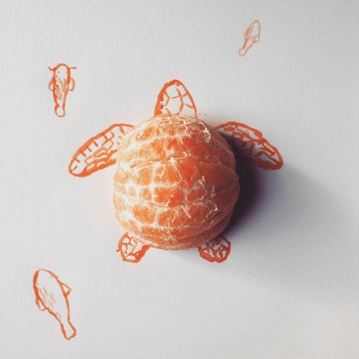 #橘子龜仙人