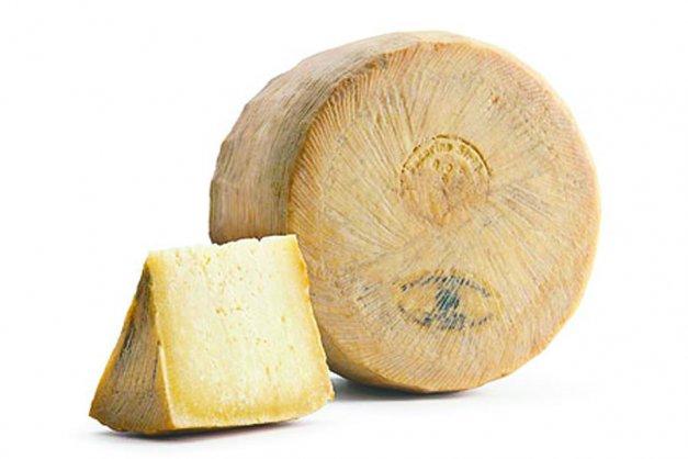 這種活蛆乳酪,將使用羊奶做成的佩克里諾乳酪, 刻意添加乳酪蠅的幼蟲, 讓食材「腐爛」的方式製成的一種傳統乳酪。