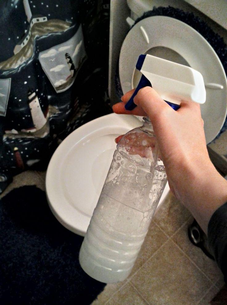 洗澡前,用自製的清潔劑噴在馬桶上,裡裡外外都要認真的噴到。