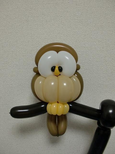 # 灰林鴞 (這種貓頭鷹想要養一隻XD)