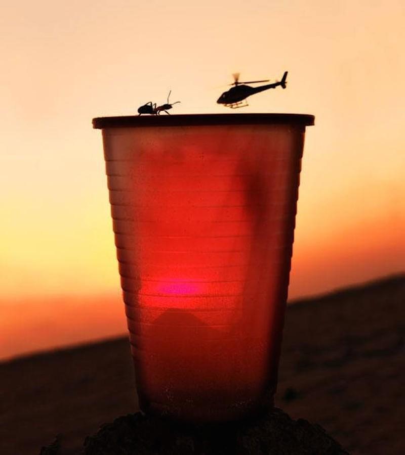 9.螞蟻和直升機不可能硬碰硬