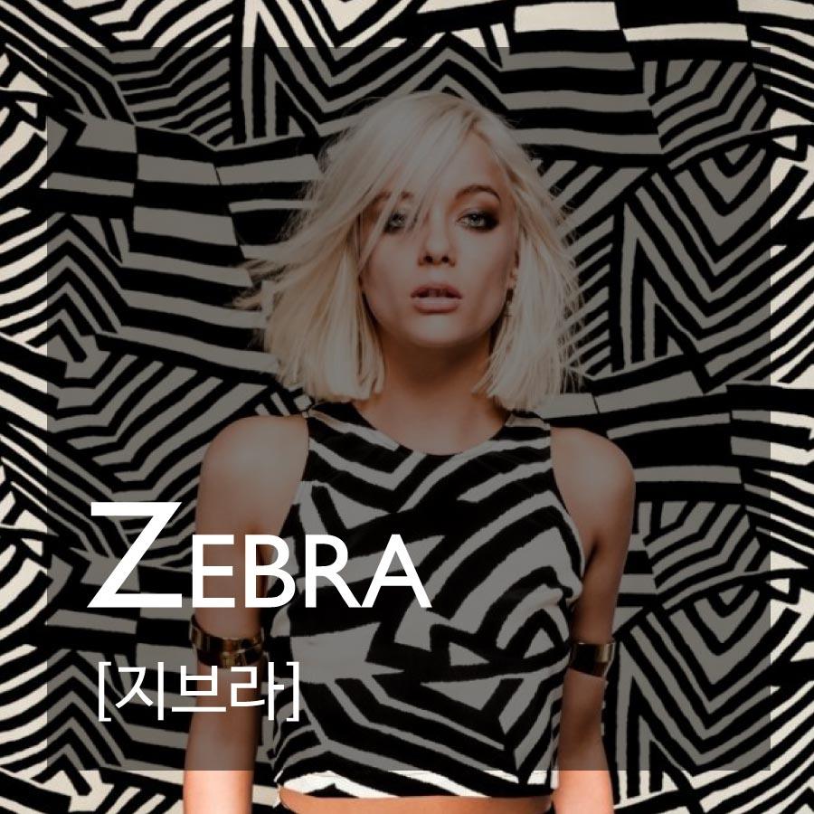 ZEBRA—許多動物皮紋中,最受歡迎的就是斑馬紋啦!