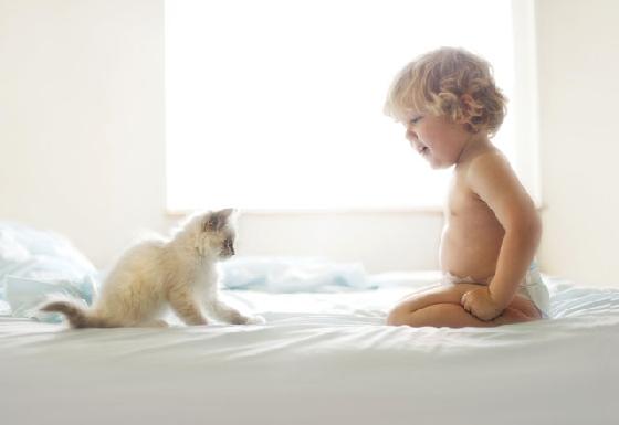 純白潔淨的氛圍裡,還在穿尿布的小正太與貓咪開始相遇,約好要陪伴對方長大。