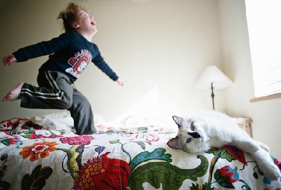 「小主人在幹嘛?怪怪的,不要理他好了。」貓咪雖然冷眼旁觀這一切,卻讓這反差畫面變得超爆笑!
