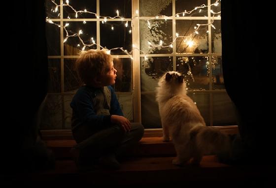 Beth Mancuso兩年前開始展開這一系列的拍攝,一開始要讓男孩和貓咪朝夕相處,其實有點難度,因為她認為狗狗的個性很主動熱情,小孩子通常會比較容易接受,但要和貓咪相處卻需要耐心和同理心,這是媽媽希望小正太們可以從貓咪身上學到的事,更表示小孩真的因為貓咪而變得比較溫柔。