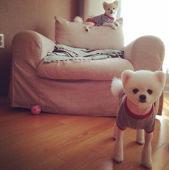 小MM和小OO的similar look...★