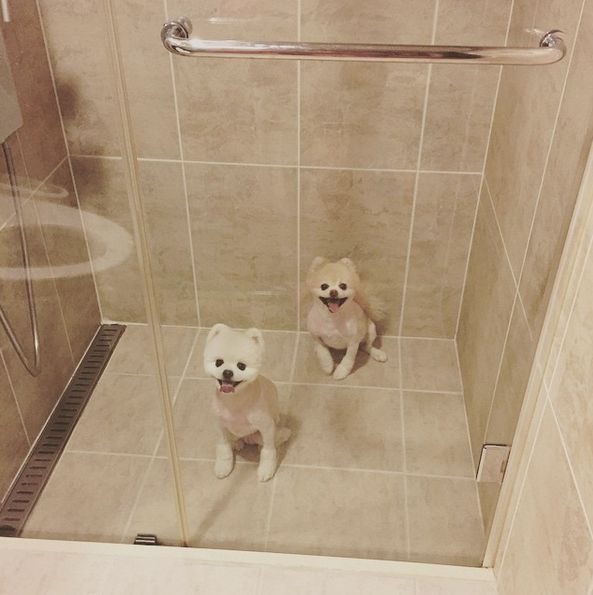 小MM小OO,快來澡澡,要睡稿稿囉~
