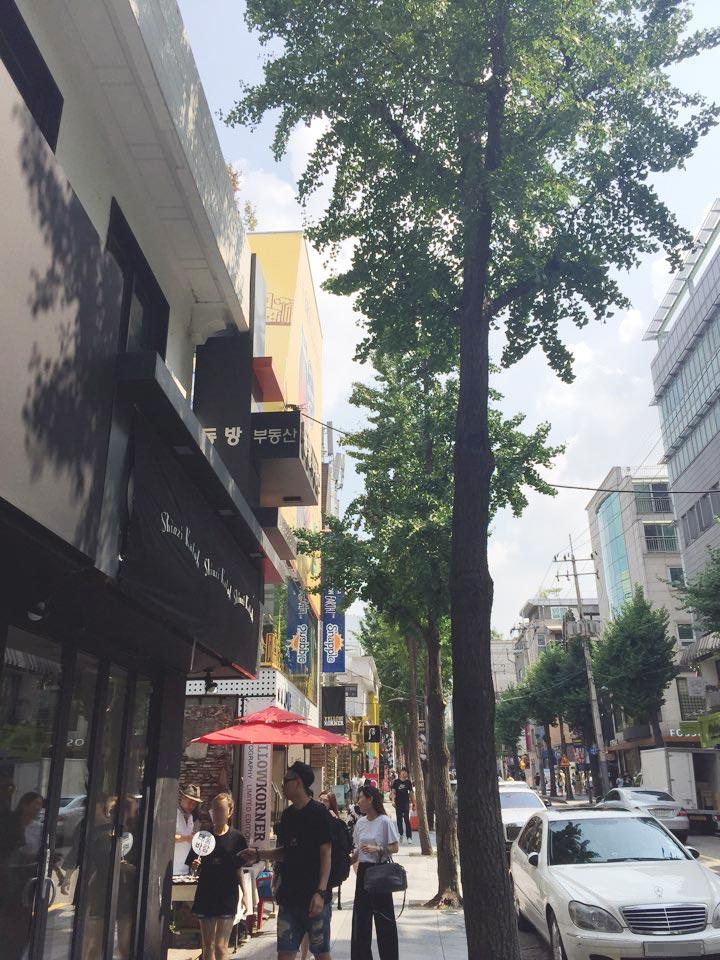 一提到韓國新沙洞的林蔭大道,我們首先想到的就是時尚、美容潮流、美食店,這裡深受韓國年輕人們的喜愛。但是不知道什麼時候起,這裡也出現了一些家居裝飾品店,來這裡掏寶的人越來越多了,也不局限於年輕人。