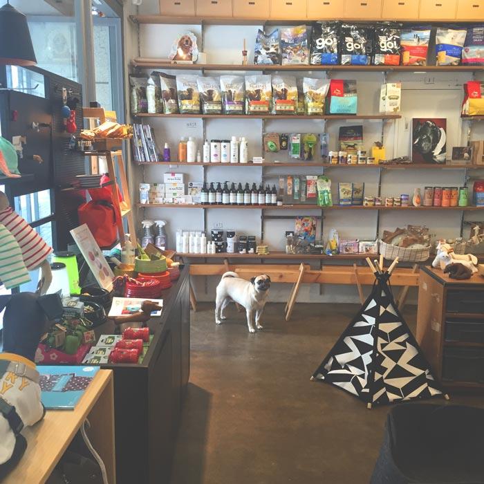 狗狗是店裡的幫忙小弟