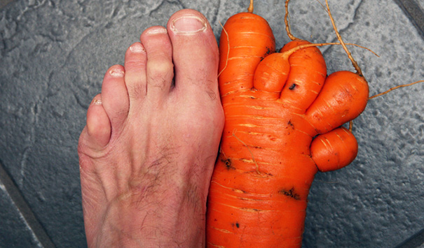 我是胡蘿蔔,我是胡蘿蔔,我是胡蘿蔔……因為很重要,所以說三遍!