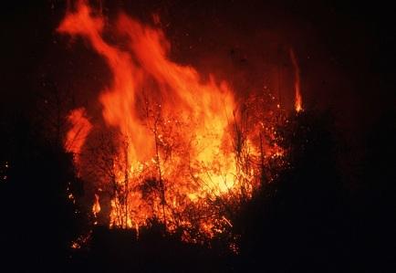 5.想去山頂自殺,但上了山頂卻因為太冷生火而引發的火災。