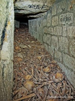 這道墓穴原本是地下採石場的通道,但隨著18世紀巴黎爆發天花和瘟疫,造成了大量人口死亡,由於巴黎的公墓數量遠遠不夠,於是決定採用這條通道用來放置遺骸。