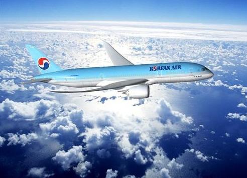 1.大韓航空 韓國最大的航空公司,同時也是亞洲最具規模的航空公司之一,屬於天合聯盟的成員之一、韓進集團成員之一。