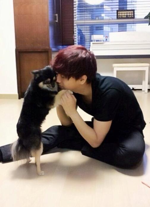 下一個要介紹的是Super Junior的成員,藝聲所養的黑色博美狗,這隻狗狗的名字叫小不點,已經被藝聲領養了4年了。