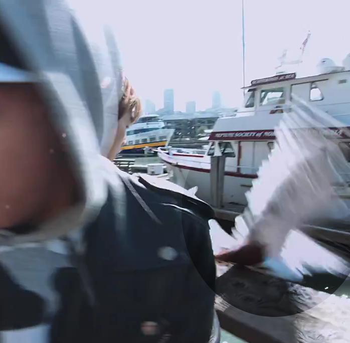 強盜海鷗超識貨,目標物「高檔冰淇淋」GOT IT!!!!!!!!!!