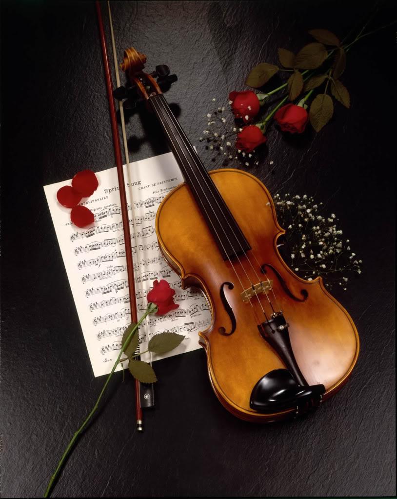 音樂系 : 「我要用一生來演奏你!」  心裡美美噠~