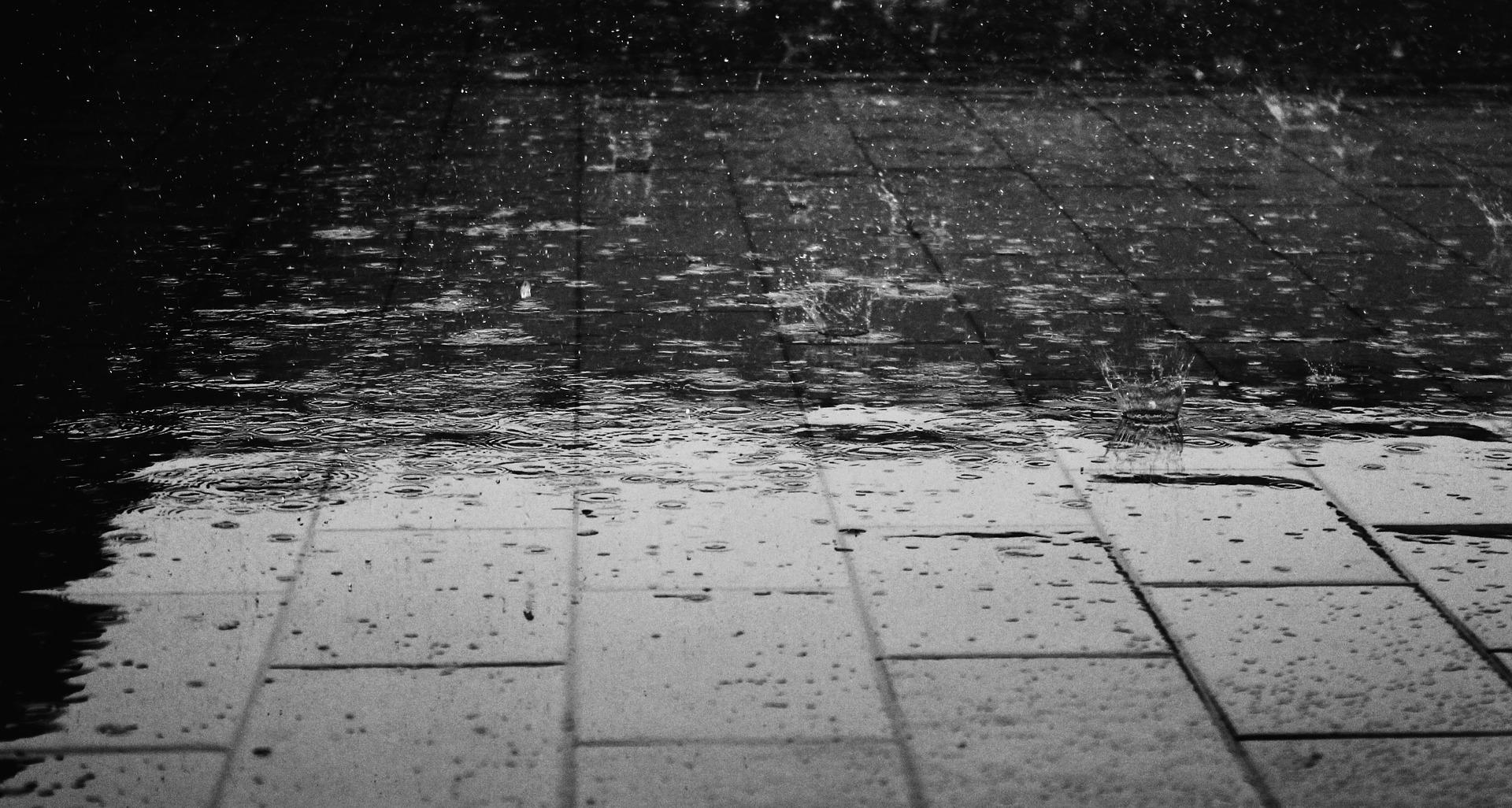 6.也不妨低下頭 看看這個世界的變化 最直接的反映出雨天的街道 卻常被大家忽略的景色