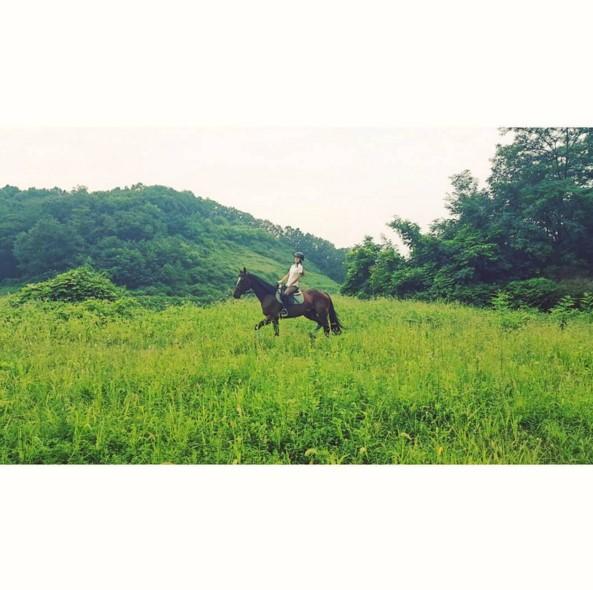 Kara具荷拉 在具荷拉的instagram上不時可以看見騎馬的照片和影片,超帥氣!