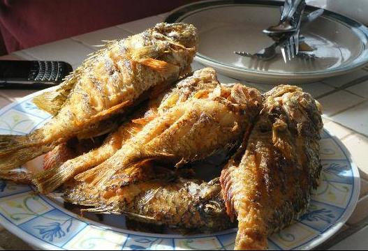 煎魚是很多人喜歡的一道料理吧!但同樣也是很多人不擅長的一道料理,不管是從最開始的處理還是到製作過程中如何去腥都很難把握。不管多美味,有時候想想麻煩的料理過程就果斷放棄了。