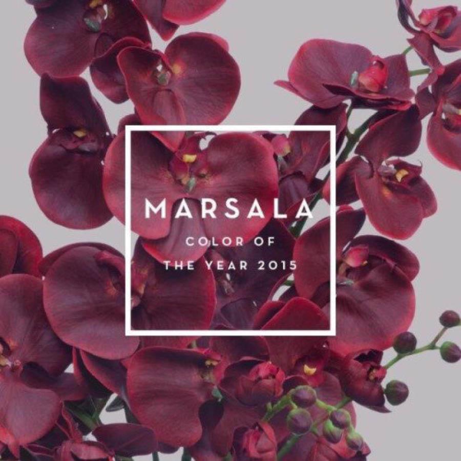 專註於色彩研究的Pantone日前也發布了2015主打色彩——Marsala紅。這是一種色調偏暗,帶點泥土色調的酒紅色,因源於義大利語瑪薩拉葡萄酒而被稱作瑪薩拉紅。這種自然和諧的色彩,能讓人看起來既成熟內斂,又自然親和,絕對是製造霸氣氣場的不二之選。