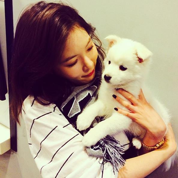 如果有關注泫雅instagram,就會發現泫雅很喜歡貓咪和小狗,之前泫雅也有暫養過一隻叫몽몽이和巴松的可愛汪星人