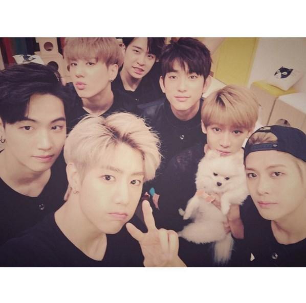 雖然是Mark跟榮宰一起買的狗狗,但看來Coco受到每個成員的關愛啊♡
