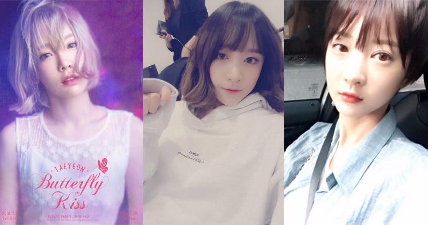 自去年高俊熙起吹起短髮風後,今年年初太妍剪了短髮,4月初哈尼也剪短了,五月EXID的另一位成員慧潾也加入短髮行列,而且比太妍和哈尼都剪更短。