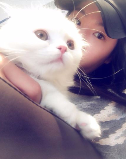Sistar 韶宥:老鼠恐懼症 雖然和演藝工作無關,但是和多絮同屬sistar的韶宥也曾公開過自己的恐懼就是害怕老鼠,就連長得像老鼠的人也會覺得很可怕(?)。