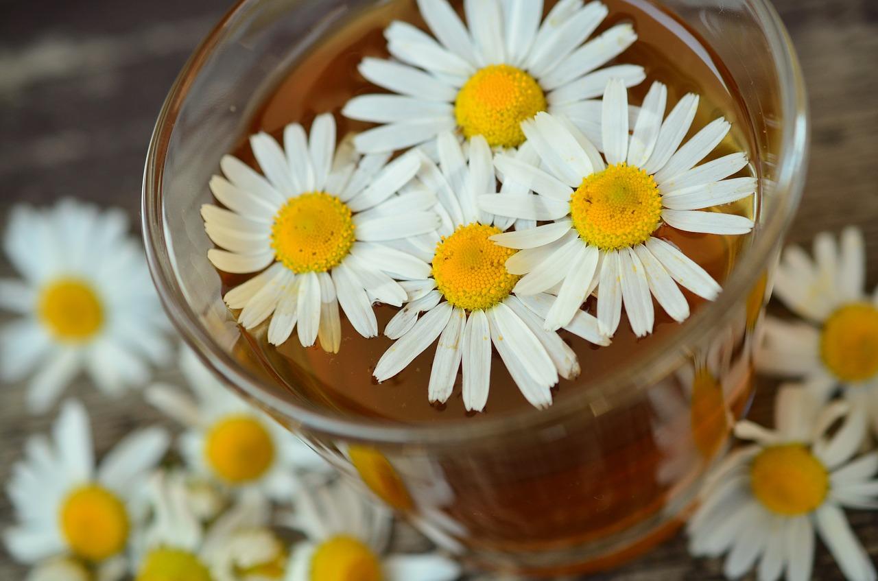 1.喝茶 美國的「農業與食品化學期刊」發表的研究顯示,「甘菊茶」具有止痛的功效。