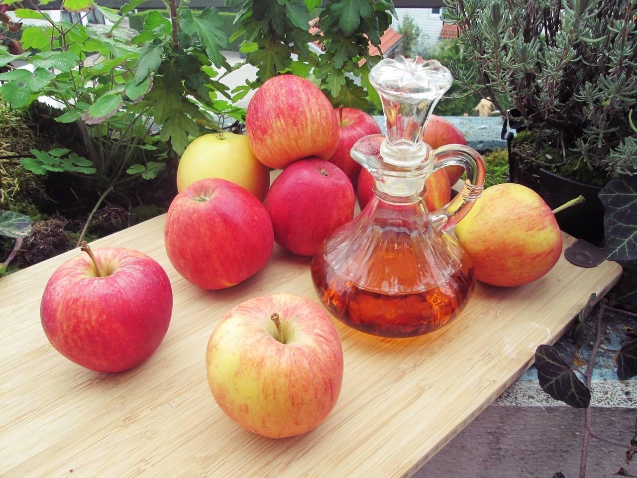 # 蘋果醋 礦物質含量高的蘋果,對於消除大腿上的脂肪很有幫助喔!