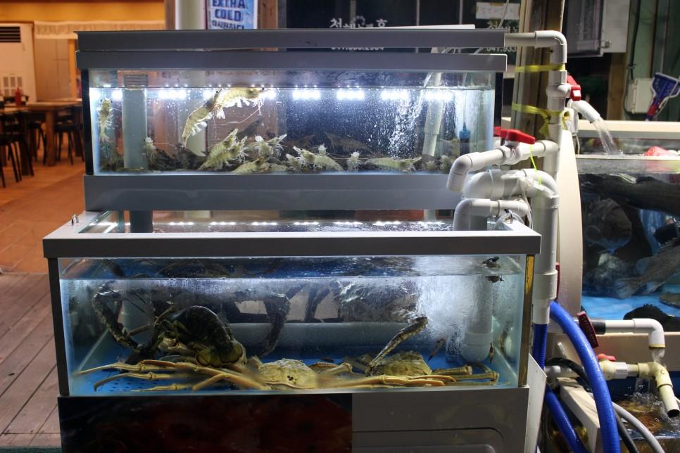一走近店門口就保證會被各式各樣的海鮮給震懾!不僅活跳跳的大蝦等一下就會直接送到你的餐桌,就連底下的海蟹也充滿活力,體型也很不一般!